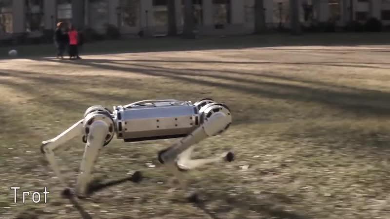 Четвероногий робот Mini Cheetah