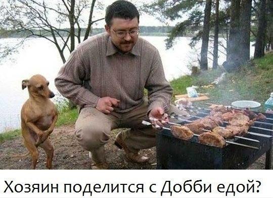 http://cs402429.userapi.com/v402429637/1b566/9LIq2pfne0A.jpg