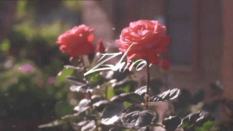 Сорви розу