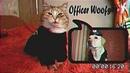 Rap Cat Feat. Officer Gaws - I'm Bad Ass