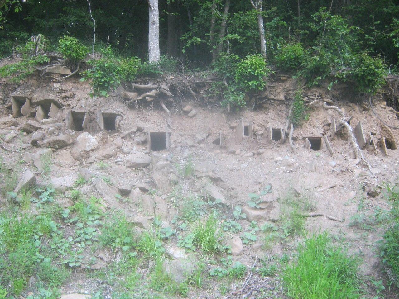 гробики или домики для птиц (около Нижнего Архыза)