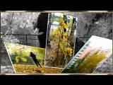 Другу Вячеславу - Наталья Штурм с песней - Школьный роман - Автор ролика-Валентина Пес