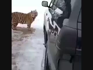 Извините, у меня там игрушка, я поиграюсь, вы не против?