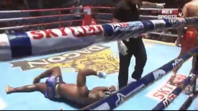 Жёсткий бирманский бокс