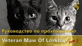 ESO Руководство по прохождению Maw of Lorkhaj by Crash Test Vashai and Skinrai