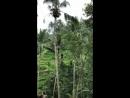 Казкове Балі місце де здійснюються найзаповітніші мрії