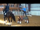 The Harlem Shake BEST YET! Must See!! Horse Girls Know How To Shake