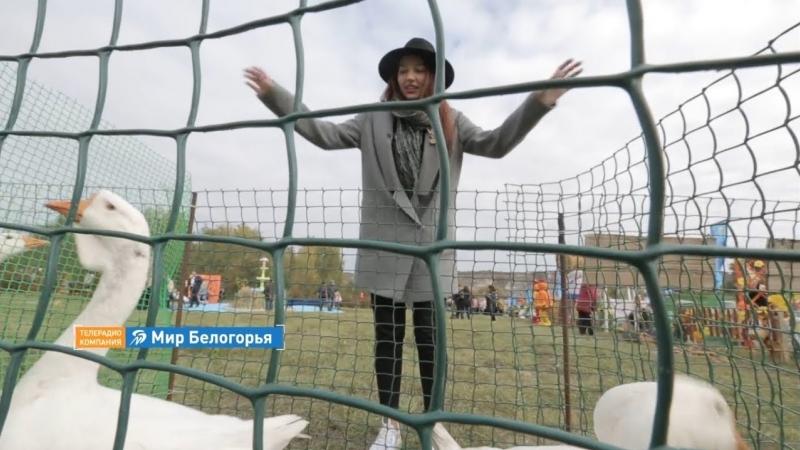 ФестКультПривет Праздник гуся в Богородском Анонс