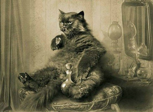 — Это водка? — слабо спросила Маргарита. Кот подпрыгнул на стуле от обиды. — Помилуйте, королева, — прохрипел он, — разве я позволил бы себе налить даме водки? Это чистый спирт!