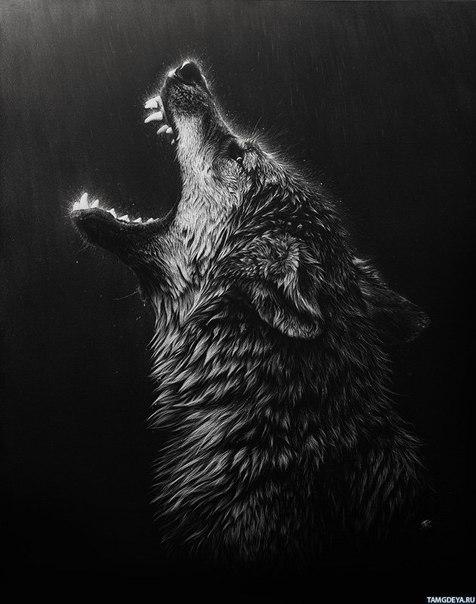 Слот - Волк-одиночка: Скачать MP3 песни бесплатно без