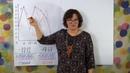 Нумерология по дате рождения График судьбы и воли Школа Анастасии Даниловой