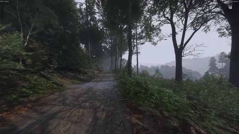 Kingdom Come Deliverance Beta - Walk in the Woods (SlowMo)