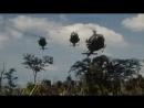 Затерянные хроники вьетнамской войны 6 Почётный мир 1971 1975 Документальный фильм 2011
