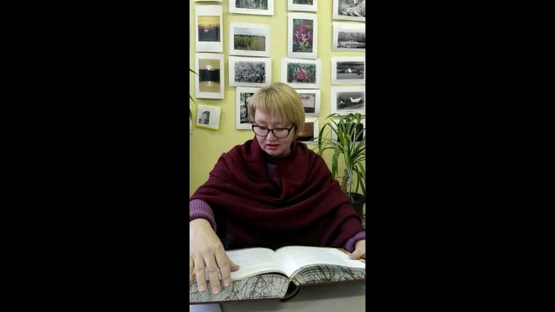 Читаем Шолохова Поднятая целина Щукарь и кобыла