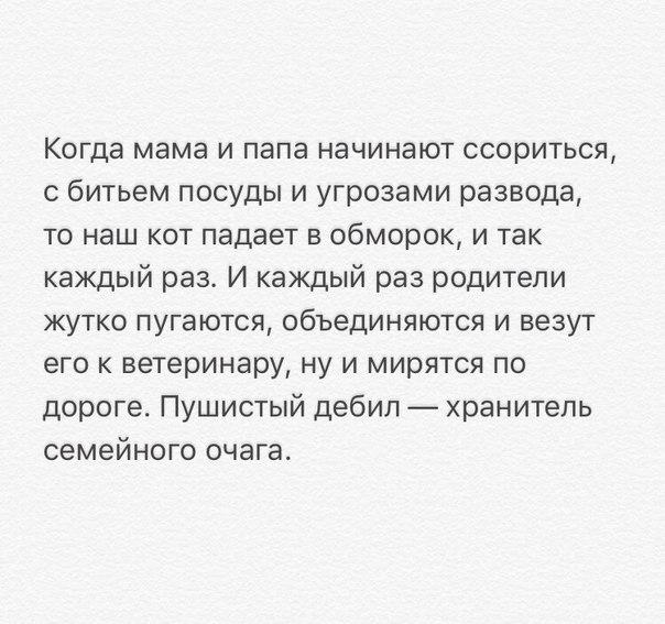 https://pp.userapi.com/c540100/v540100070/519b6/kGOSbo1nkCc.jpg