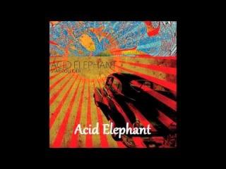 Acid Elephant - Las Noches del Desierto