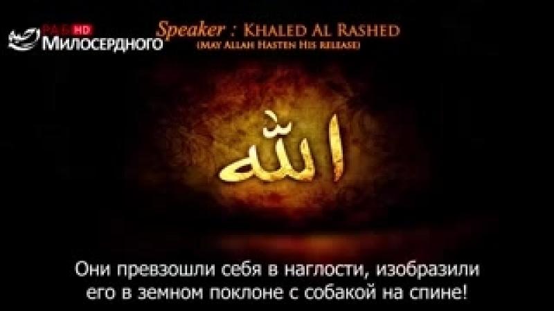❗О Умма Мухаммада, (мир ему и благословение Аллаhа), проснись! Халид Ар - Рашид...