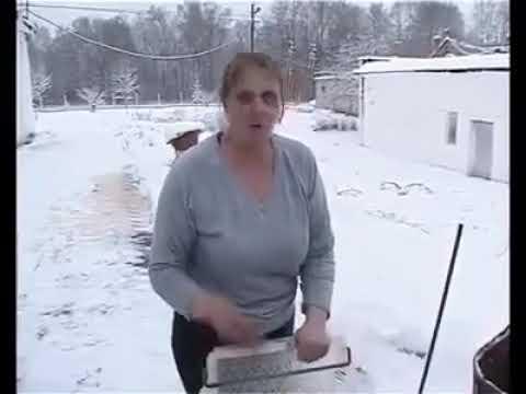 Цыплят заживо заливают водой на морозе