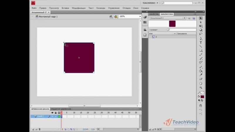 Точка регистрации в Adobe Flash CS4 (17-42)