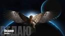 Ангелы мироздания о себе Часть 1