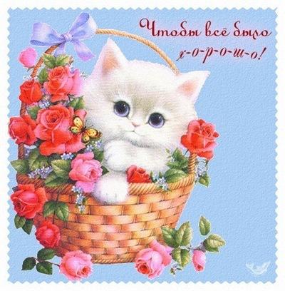 Ольга Шатицкая, 22 апреля , Гомель, id199340558