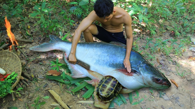 Unbelievable Turtle in Big Fish Stomach and then Cooking Big Fish For Dinner