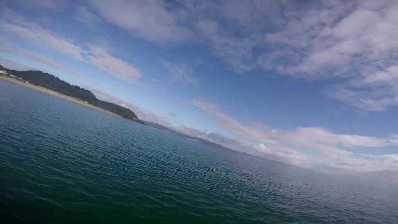 GoPro Awards_ Orca vs. Paddle Board