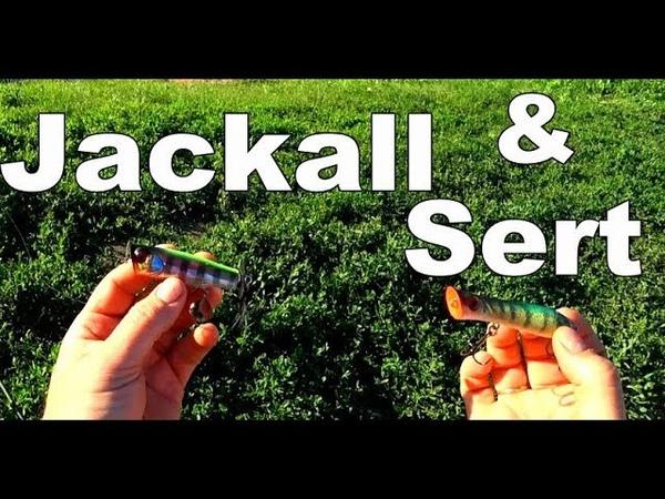Кто же из них настоящий УБИЙЦА окуней Jackall Binksy или SERT Killer Pop 80F Батл