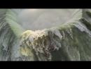 Невероятные_видео_снятые_дронами