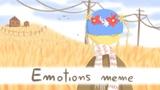 Emotions MEME countryhumans