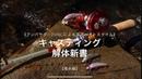 『渓流ベイト』Mountain stream with Ambassadeur2500C【CASTING MANUAL】(*)基本編=basic level