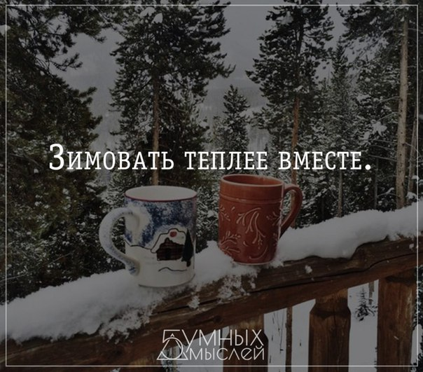 https://pp.vk.me/c543106/v543106631/171b4/fOfPzK2nTls.jpg