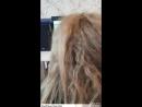 Повторное кератиновое выпрямление волос До и После спустя 13 мес. (концы прямые 😲 только корни отросли 👍)