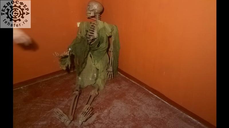 Оживший скелет. Техносфера электроника для квестов