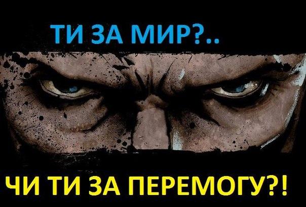 """Добровольческие батальоны не пропустили очередной """"гумконвой"""" Ахметова, - Манько - Цензор.НЕТ 1220"""