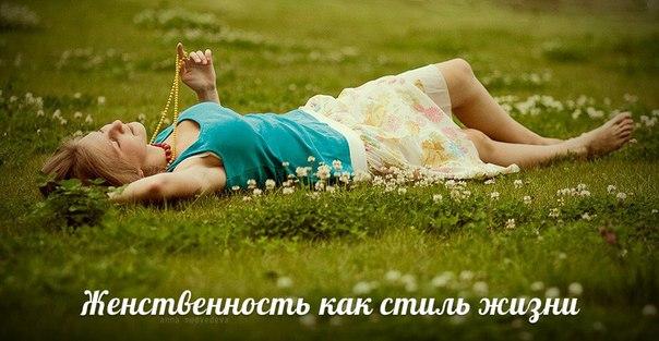 OccYlIQT66o.jpg