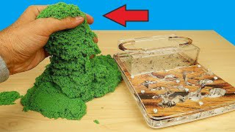 Реакция муравьев на кинетический песок Почему они это сделали Муха из Китая alex boyko
