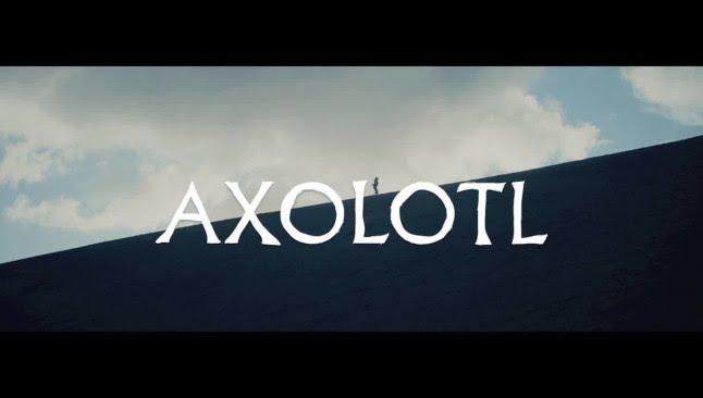 The Veils - Axolotl (ft. El-P) (Official Music Video) | Pitchfork