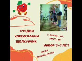 VID_23480409_184443_361.mp4