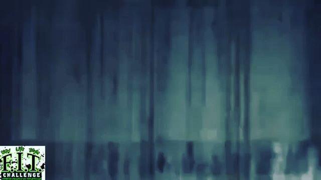 Alexandr.suzdalev_hlf video