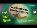 Испытайте свой мозг - Test Your Brain (Все 3 серии из 3) BDRip 720p