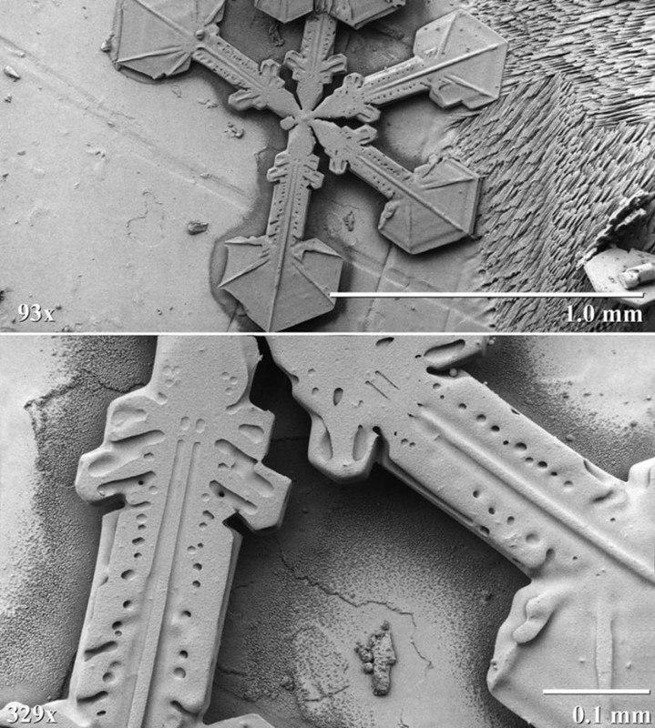 Снежинка под электронным микроскопом