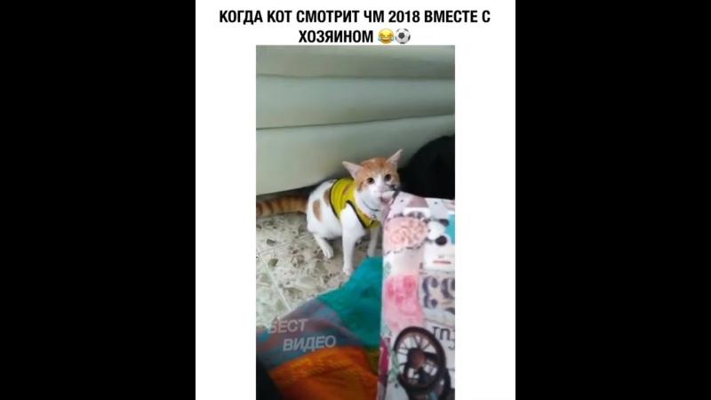 VID-20180706-WA0009.mp4