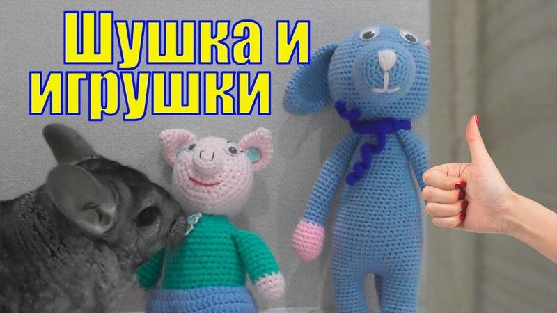 Шиншилла Шуша и игрушки Забавная смешная шиншилла