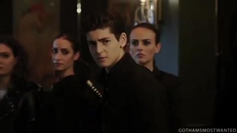 Gotham | Готэм | Bruce Wayne | Брюс Уэйн | vine