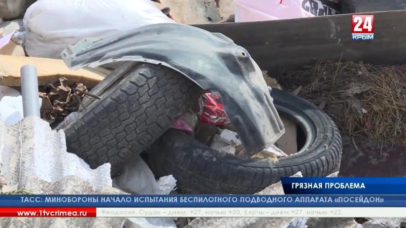 Жизнь среди гор мусора До 15 тысяч кубометров незаконных крупных отходов ежемесячно вывозят симферопольские коммунальщики