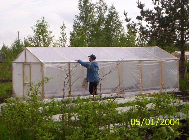 Деревянная теплица своими руками под пленку фото пошагово 84