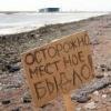 СоРиКи: PuMp BattLe trash 28.07.2012г.