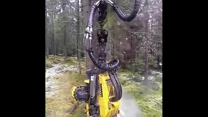 Отличный аппарат по заготовке леса