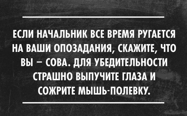 https://pp.vk.me/c7005/v7005655/36723/Yk2ZChea6Cc.jpg